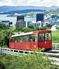 The Wellington Cable Car climbs to the Botanic Garden;